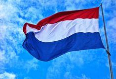 mid-rf-obyavil-poslov-nederlandov-personami-non-grata